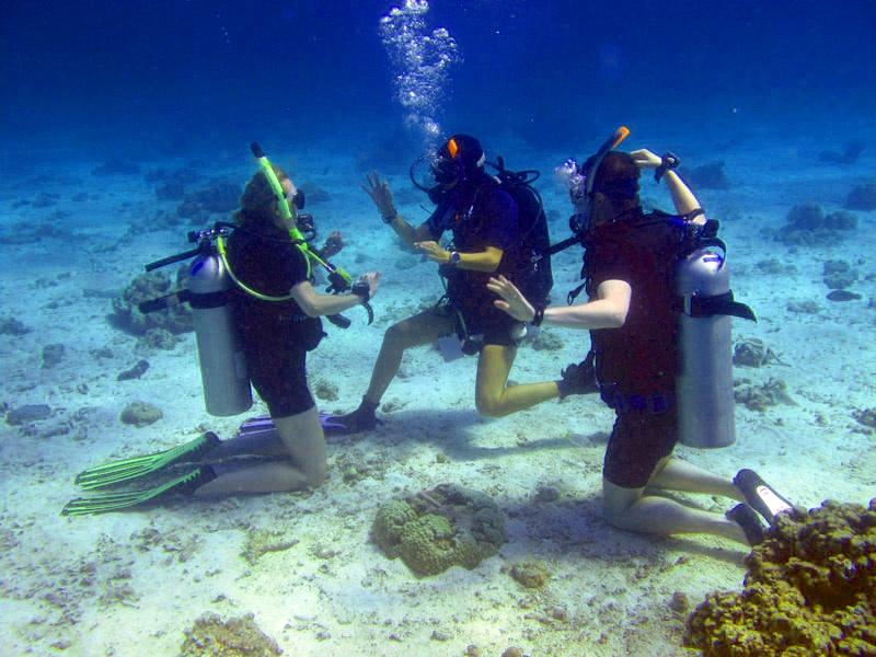 discover scuba diving tulum