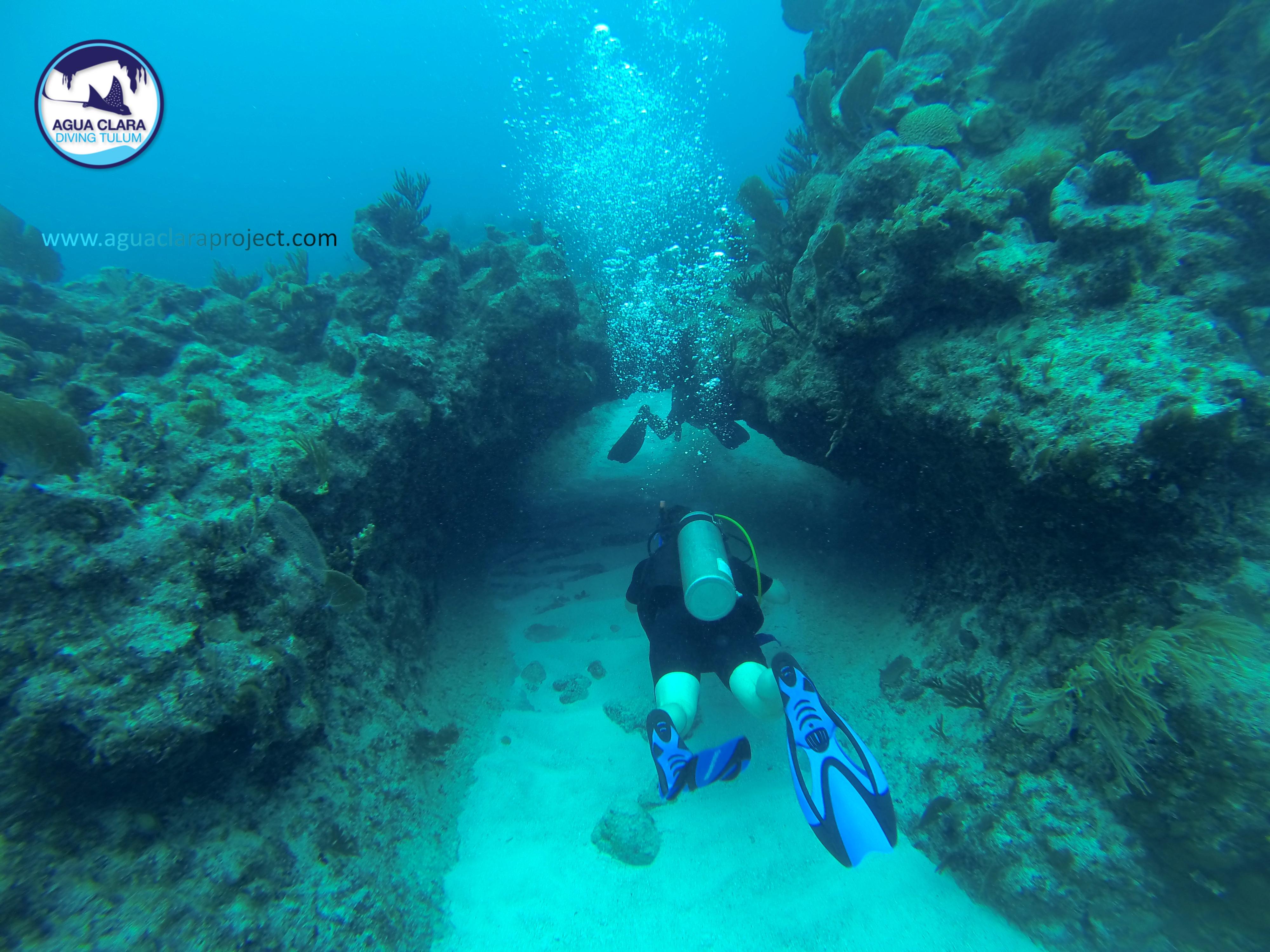 Tulum reef diving