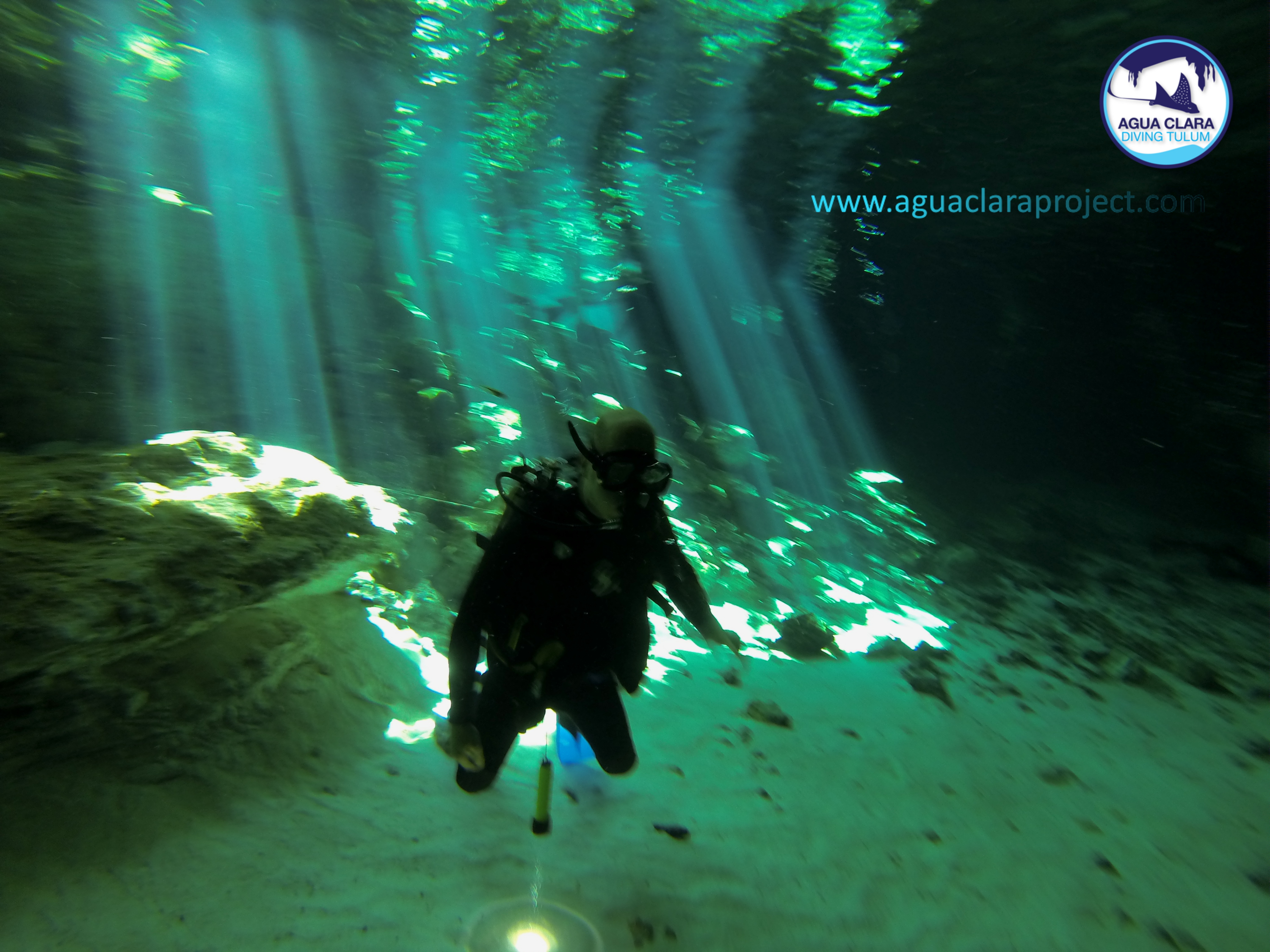 cenote diving with agua clara