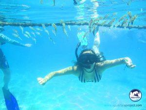 snorkel tour reef of tulum