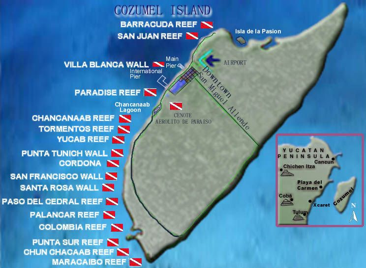 DIVING IN COZUMEL ABOUT
