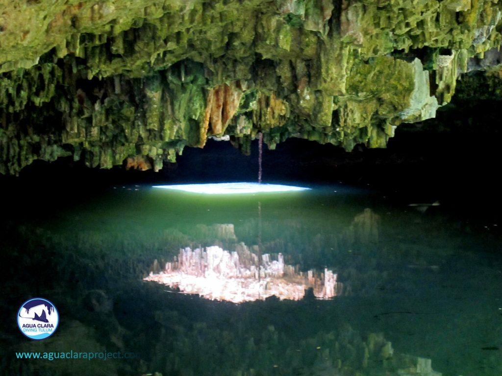 Cenote pirañas tankah
