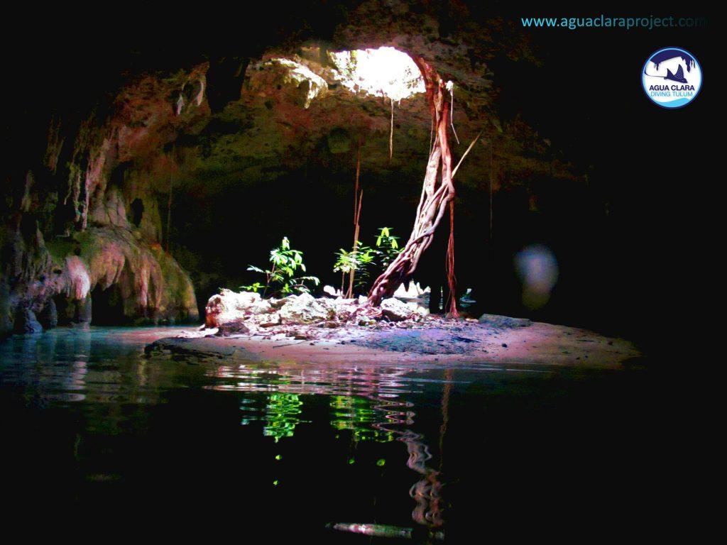 cenote root saac aktun