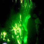 diving crack casa cenote