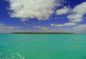 Cayo Culebra, Punta Allen