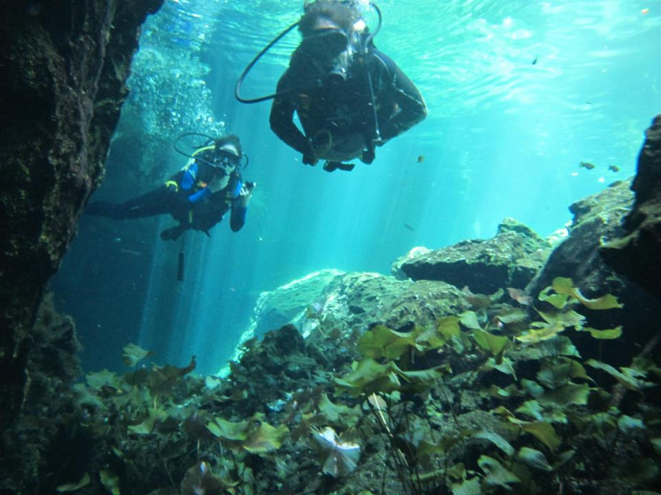 Gran cenote snorkel cave diving site - Dive shop mexico ...